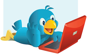Twitter bird with laptop